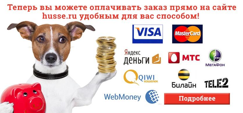 Новые способы оплаты на www.husse.ru