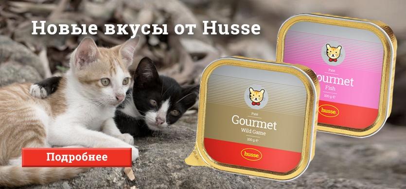 Новые паштеты для кошек!
