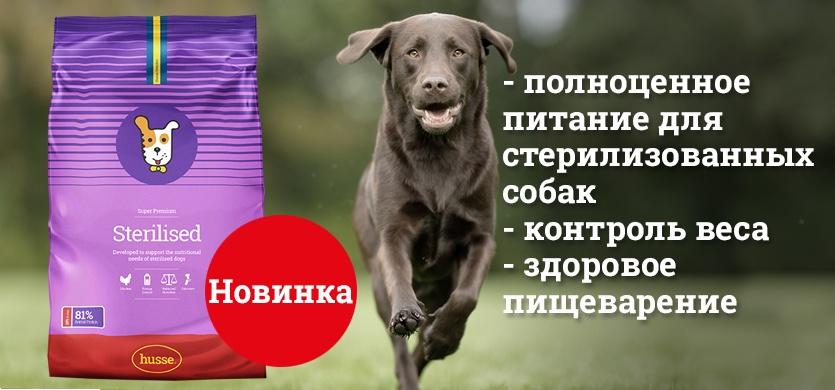 Новый корм для стерилизованных собак