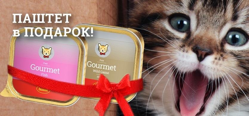 Паштет для кошек в подарок