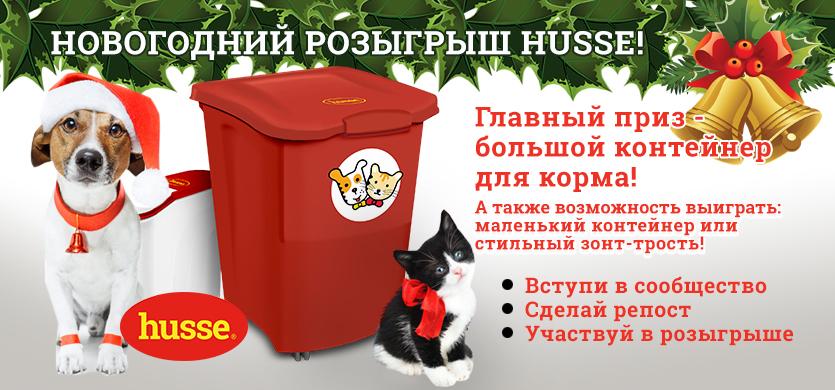 Новогодний розыгрыш от Husse!